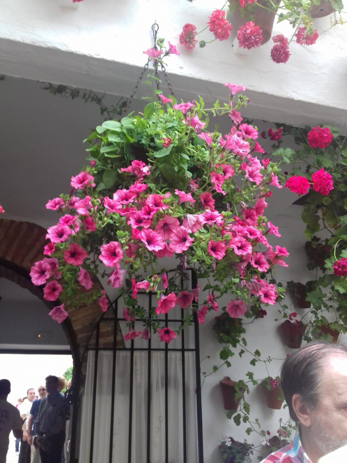 Casa Rural El Gorros