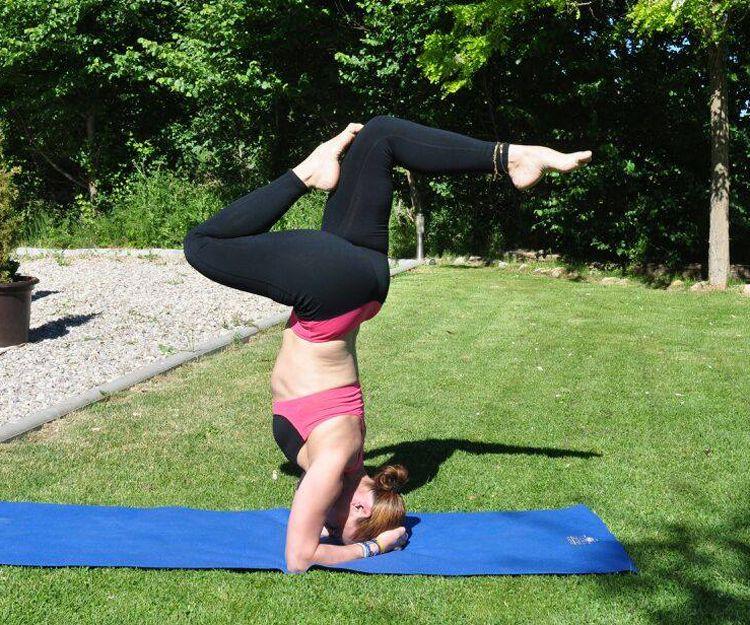 Yoga para todas las edades a diferentes niveles