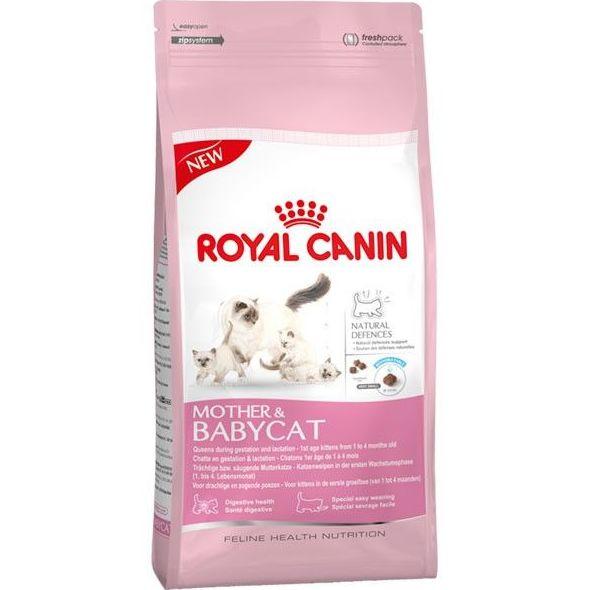 Alimentación felina: Perros y gatos de Galumis