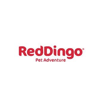 RedDingo Pet Adventure: Perros y gatos de Galumis