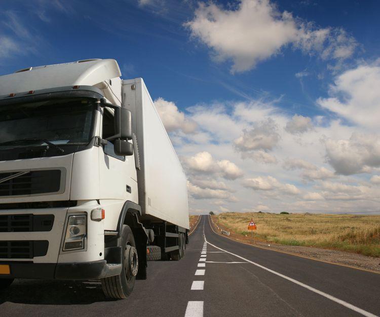Empresa de transporte por carretera en Palma de Mallorca