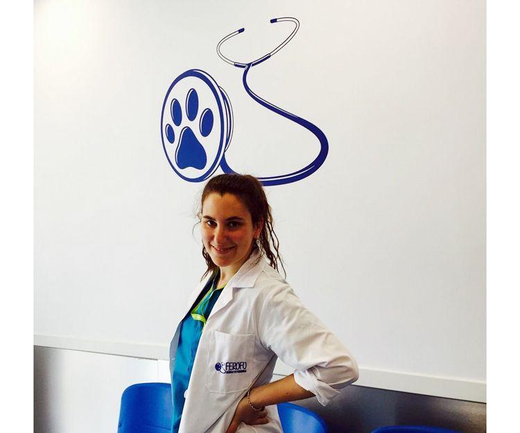 Clínica Veterinaria Ferofu, Brunete
