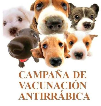 CAMPAÑA ANTIRRÁBICA 2018: Especialidades y Servicios de Clínica Veterinaria Ferofu