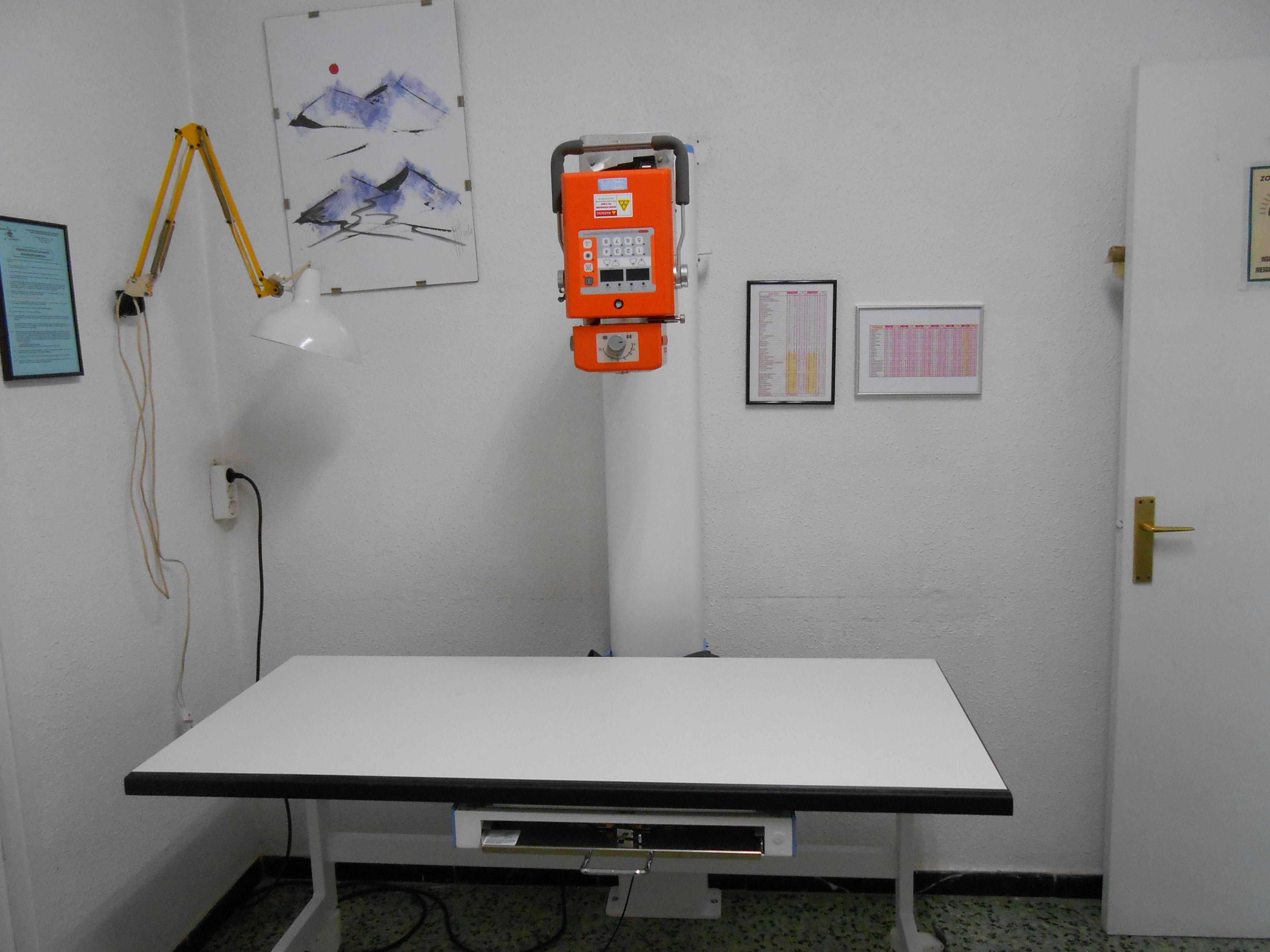 Diagnóstico por la imagen : Servicios de Clínica Vet. Verdum