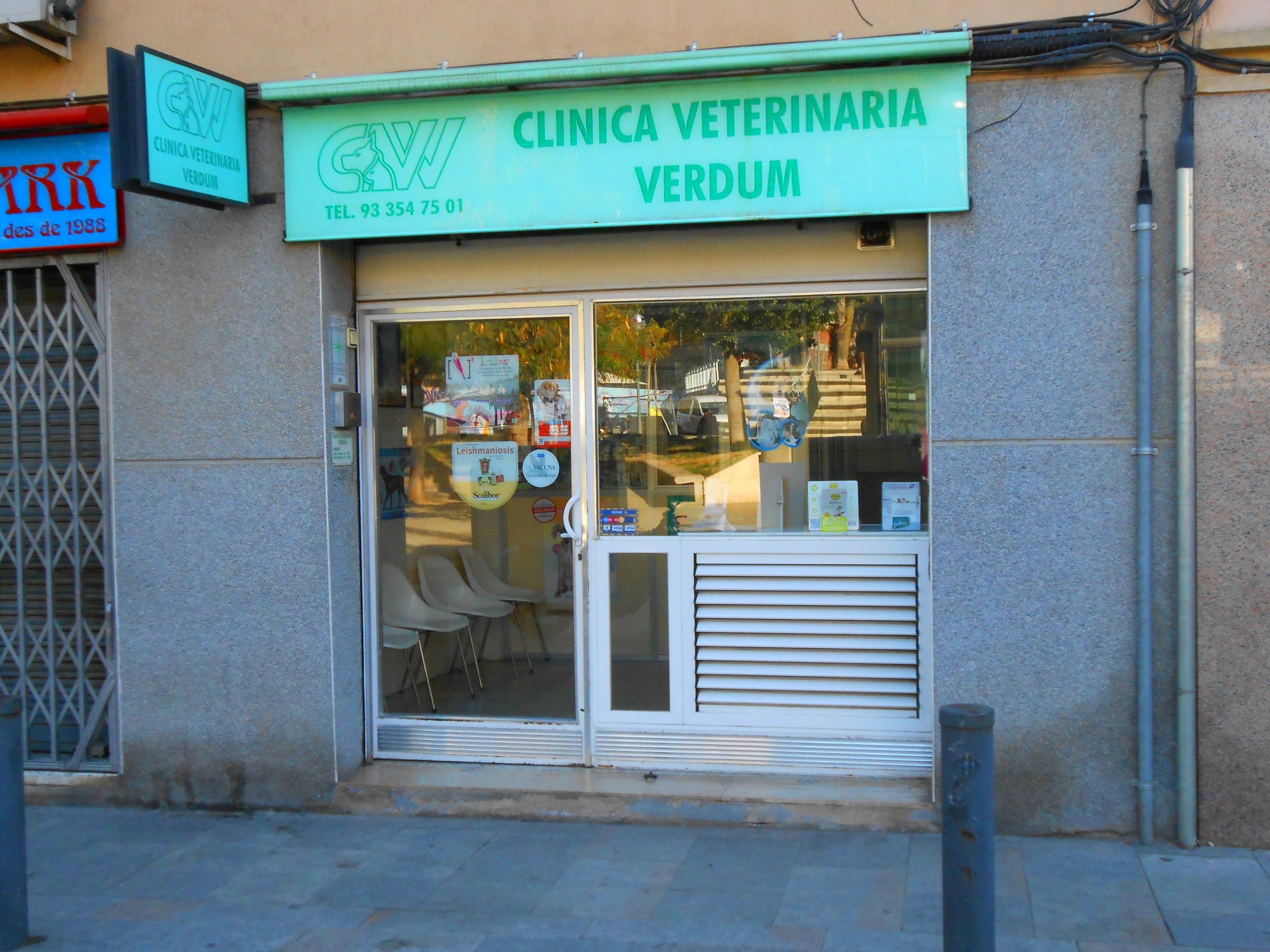 Foto 2 de Todo tipo de cirugías en  | Clínica Vet. Verdum