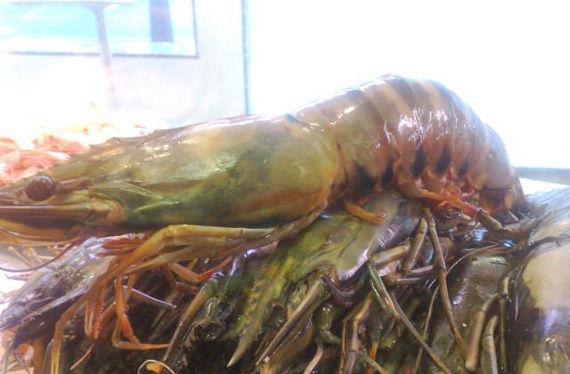 Foto 8 de Marisquerías en Torremolinos | Marisquería La Chacha
