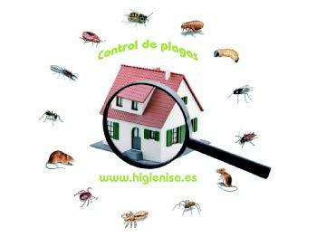 Foto 17 de Desinfección, desinsectación y desratización en Mutxamel | Higienisa