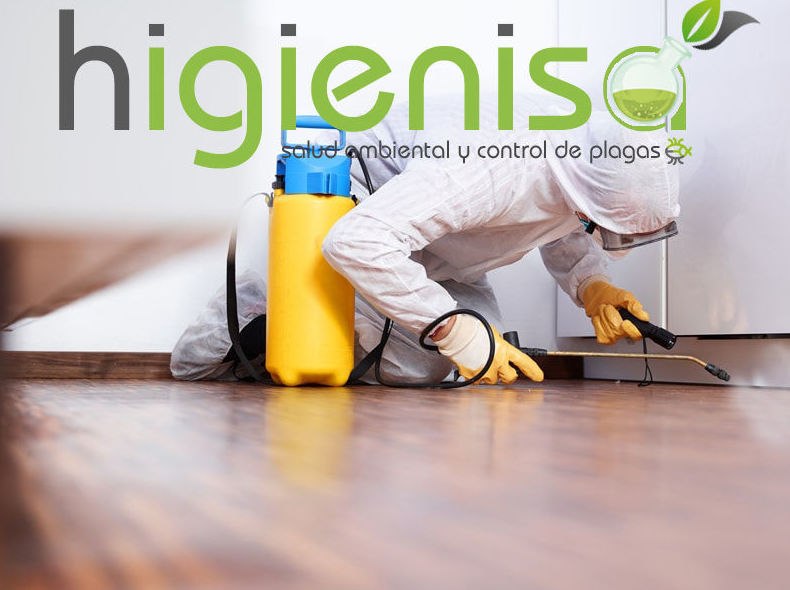 Expertos en control de plagas en Alicante