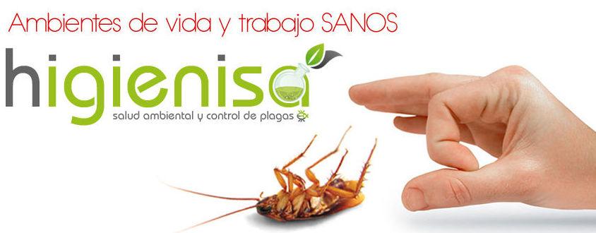Empresa de desinfecciones Alicante