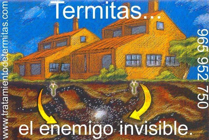 tratamientos para eliminar termitas con cebos