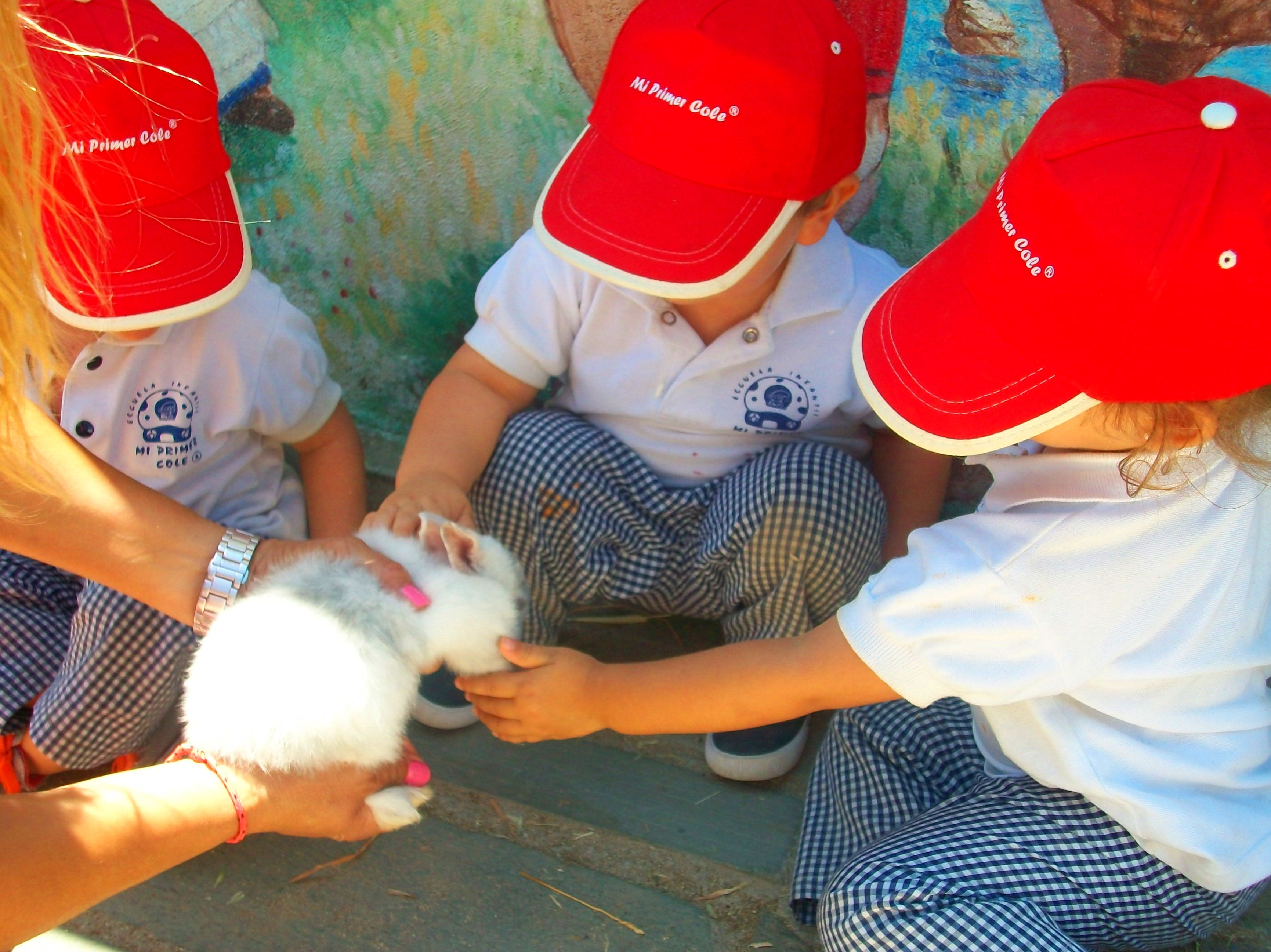 Foto 13 de Guarderías y Escuelas infantiles en Madrid | Mi Primer Cole