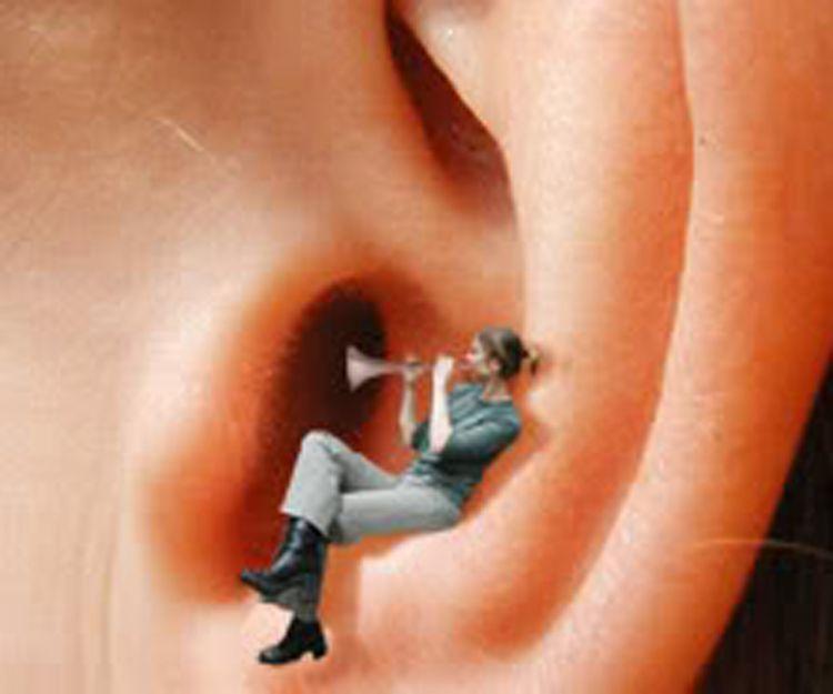 Centro auditivo Castro, los mejores audífonos al mejor preciio