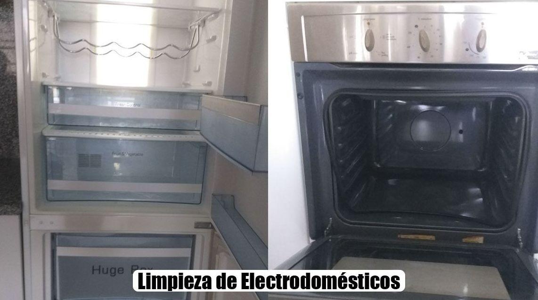 Limpieza de electrodomésticos en domicilios particulares