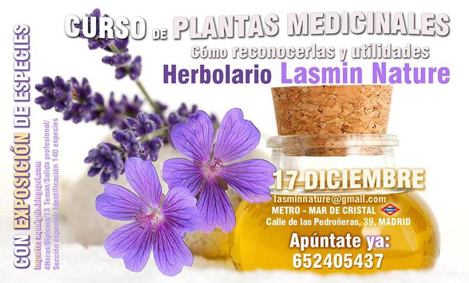 Curso Plantas Medicinales 17 de Diciembre