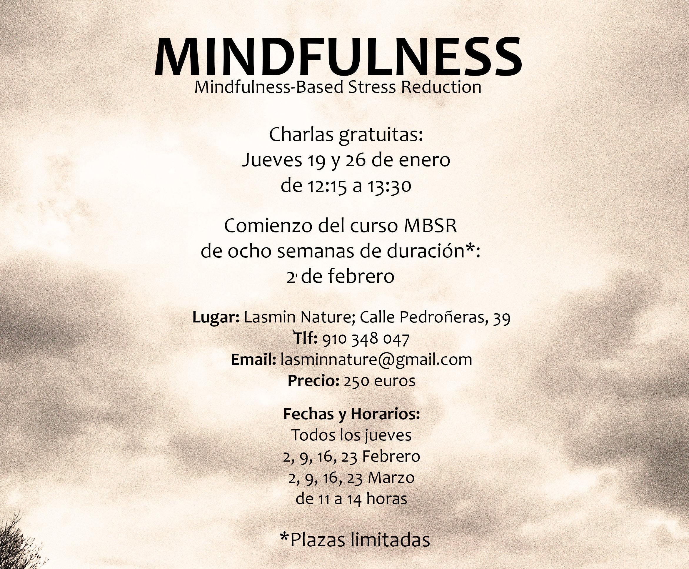 Charla Mindfulness