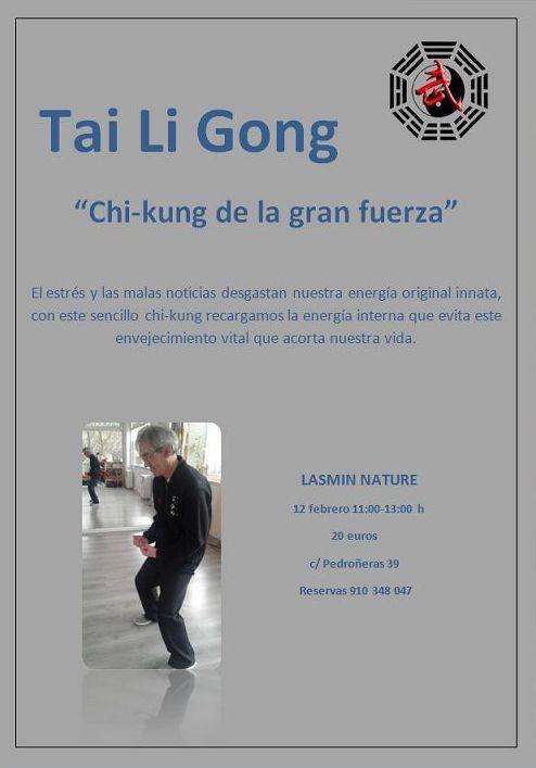 Taller Chi-Kung Tai Li Gong 12 de Febrero