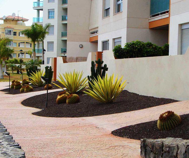 Jardines de poco mantenimiento en Santa Cruz de Tenerife