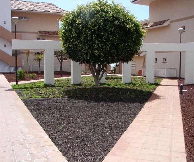 Mantenimiento de jardines en Santa Cruz de Tenerife