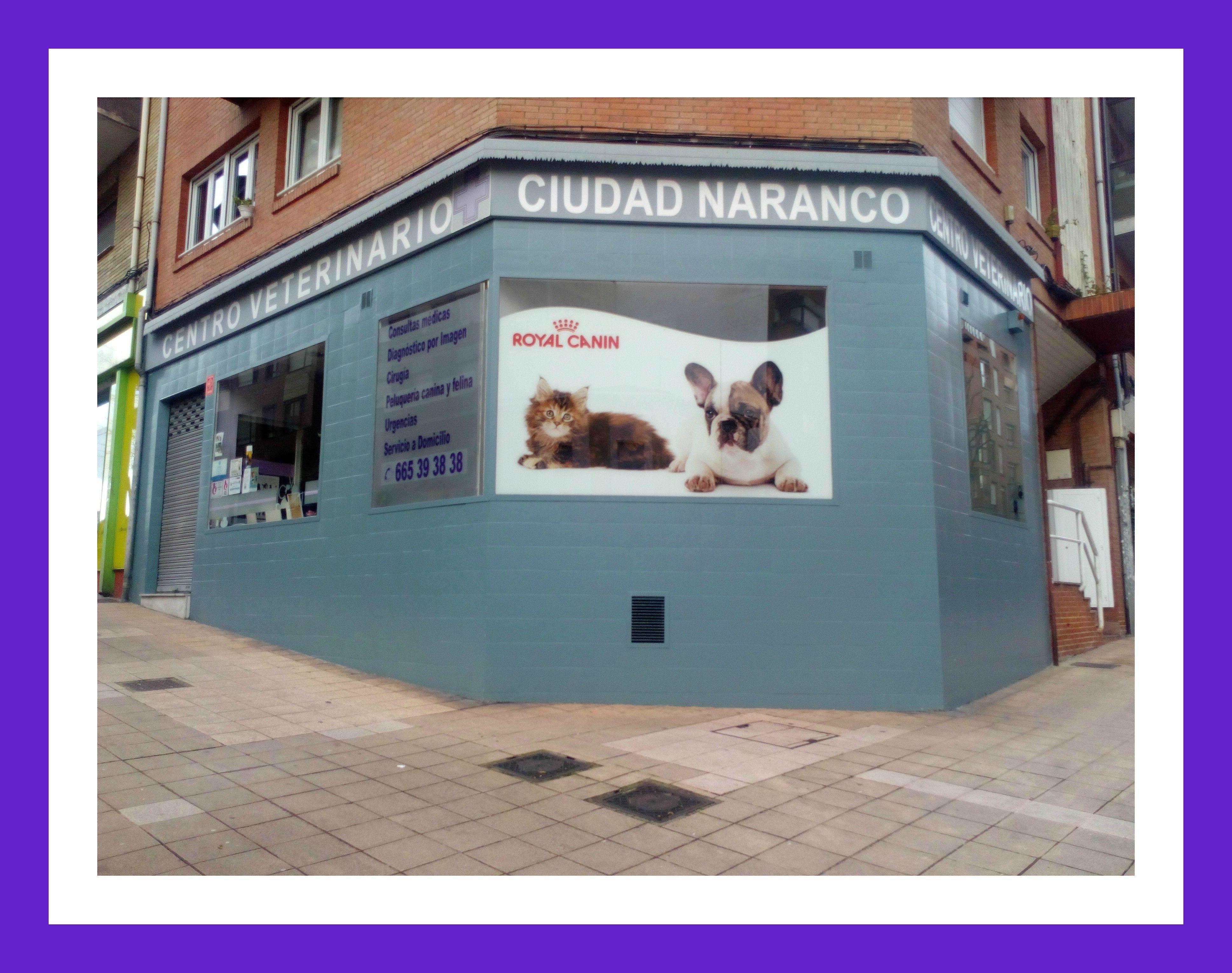 Clínica veterinaria en Oviedo