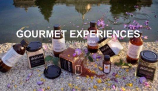Centro de Estética en Parla (ETHERMA) Experiencias Gourmet