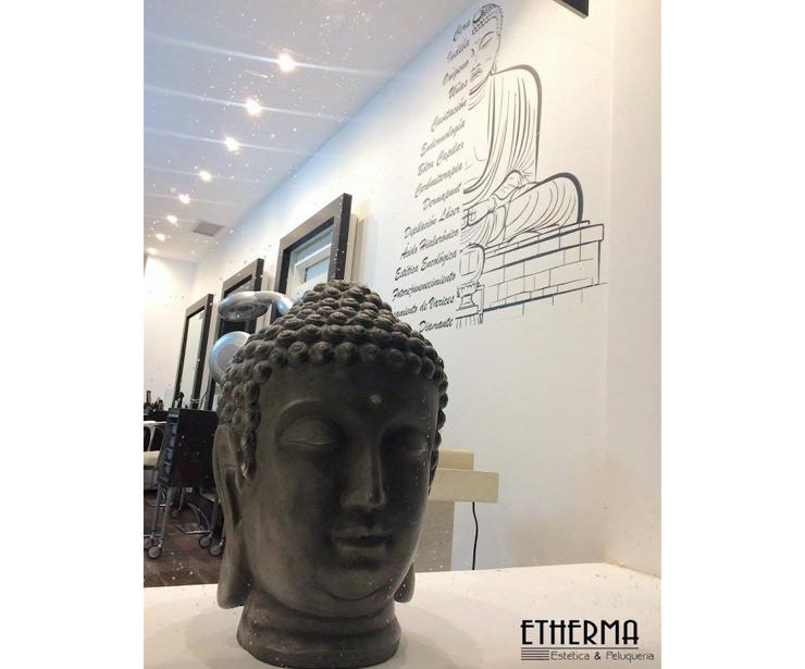 Centro de Estética en Parla (ETHERMA)