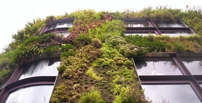 Edificios verdes Alicante