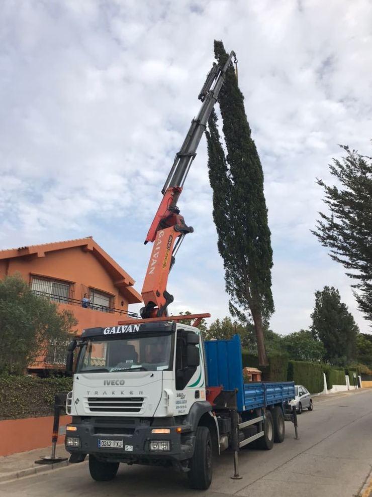 Foto 10 de Transporte de mercancías en Chiclana de la Frontera | Transportes y Grúas Galván - Alquileres Galván