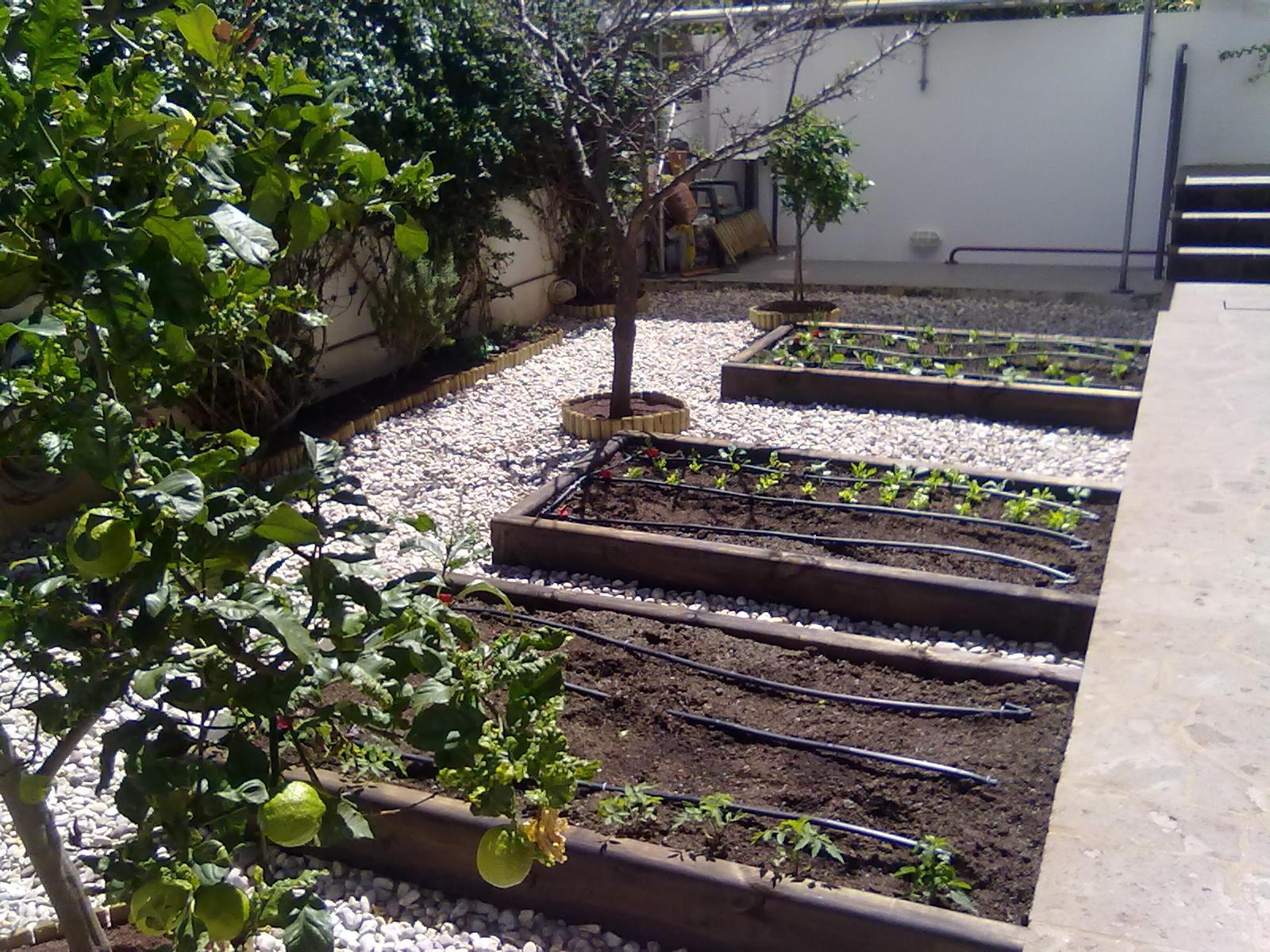 Foto 28 de Jardines (diseño y mantenimiento) en Santa Cruz de Tenerife   GT Verde