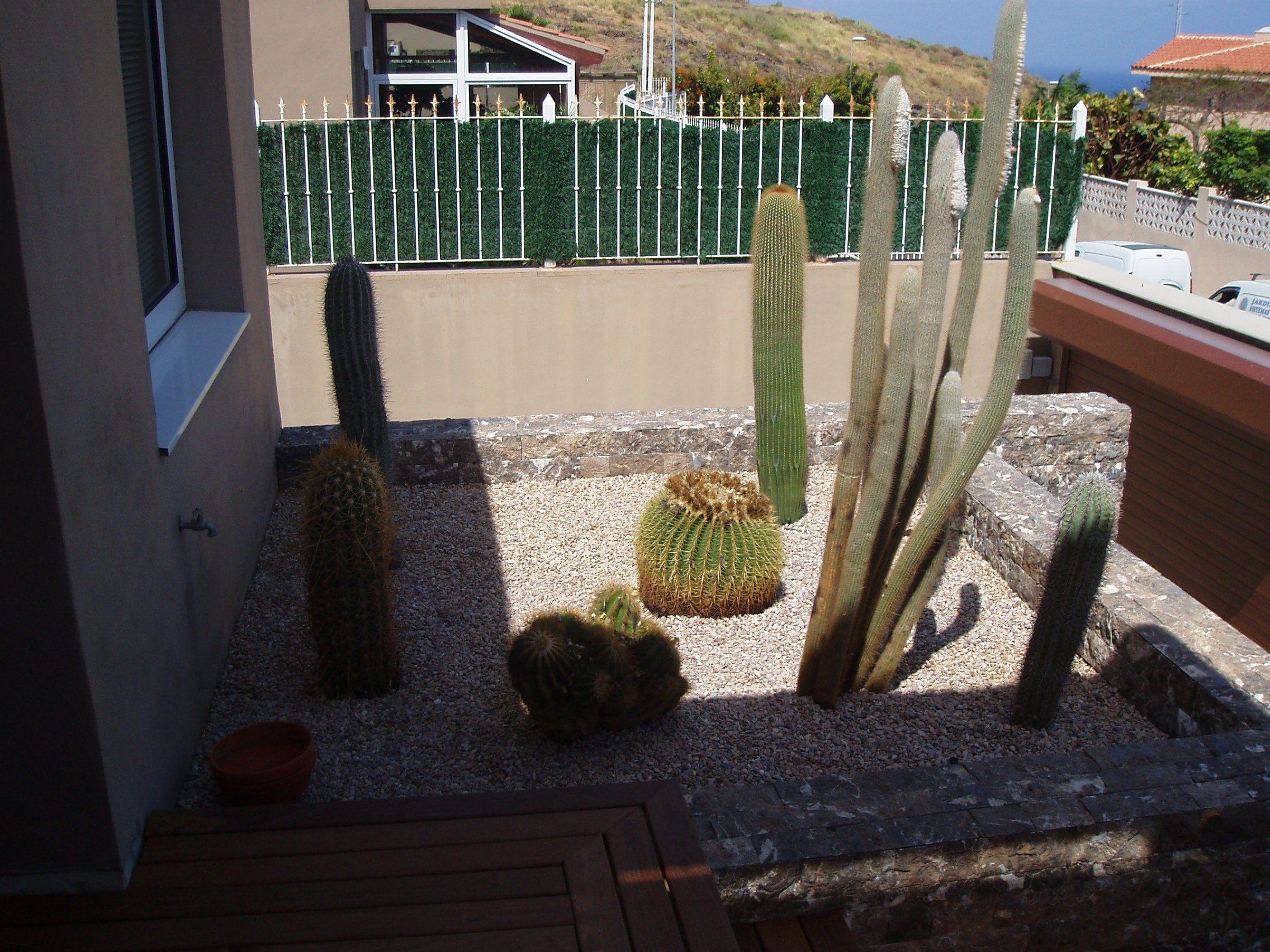 Foto 35 de Jardines (diseño y mantenimiento) en Santa Cruz de Tenerife | GT Verde