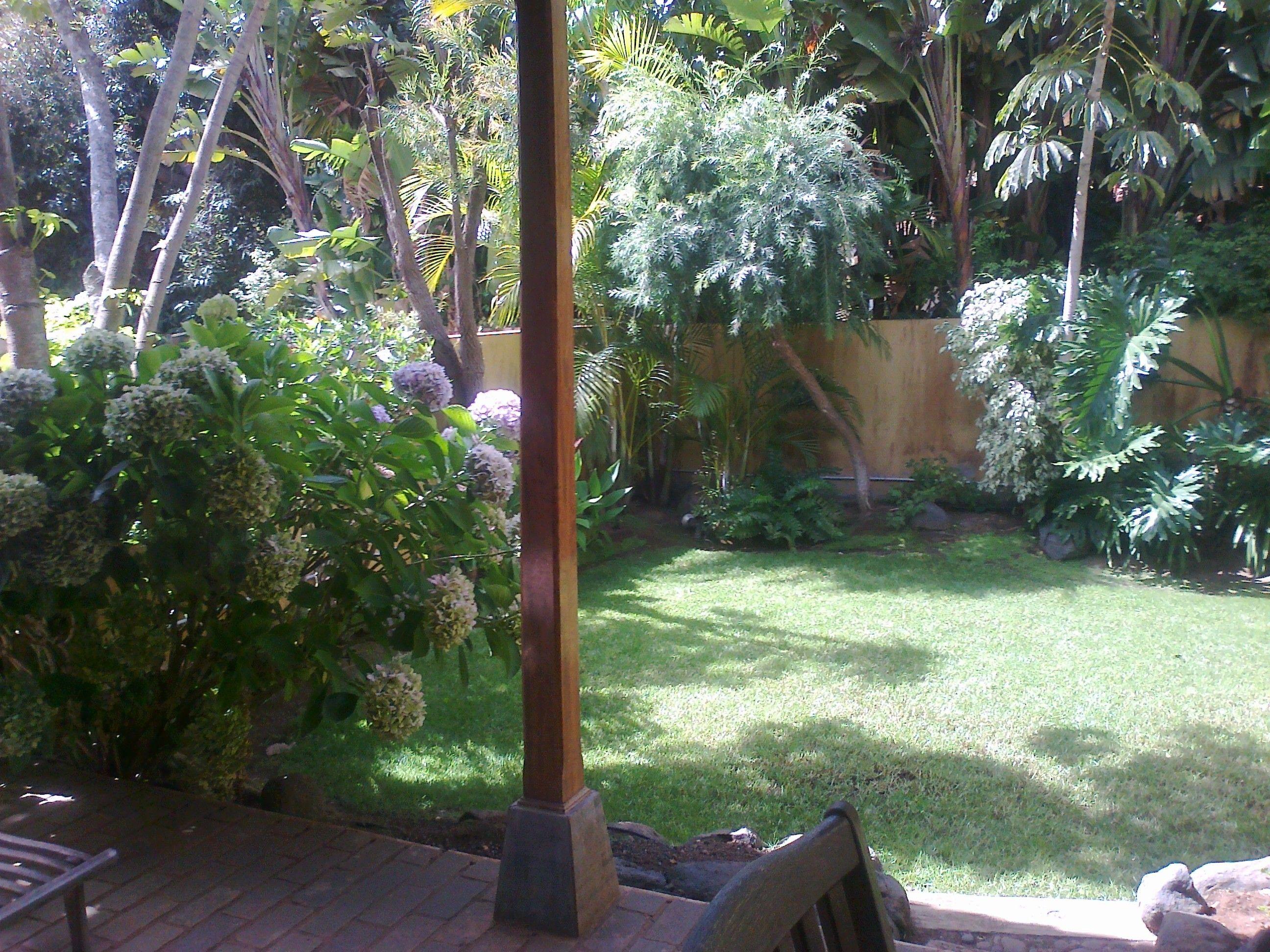 Foto 37 de Jardines (diseño y mantenimiento) en Santa Cruz de Tenerife | GT Verde