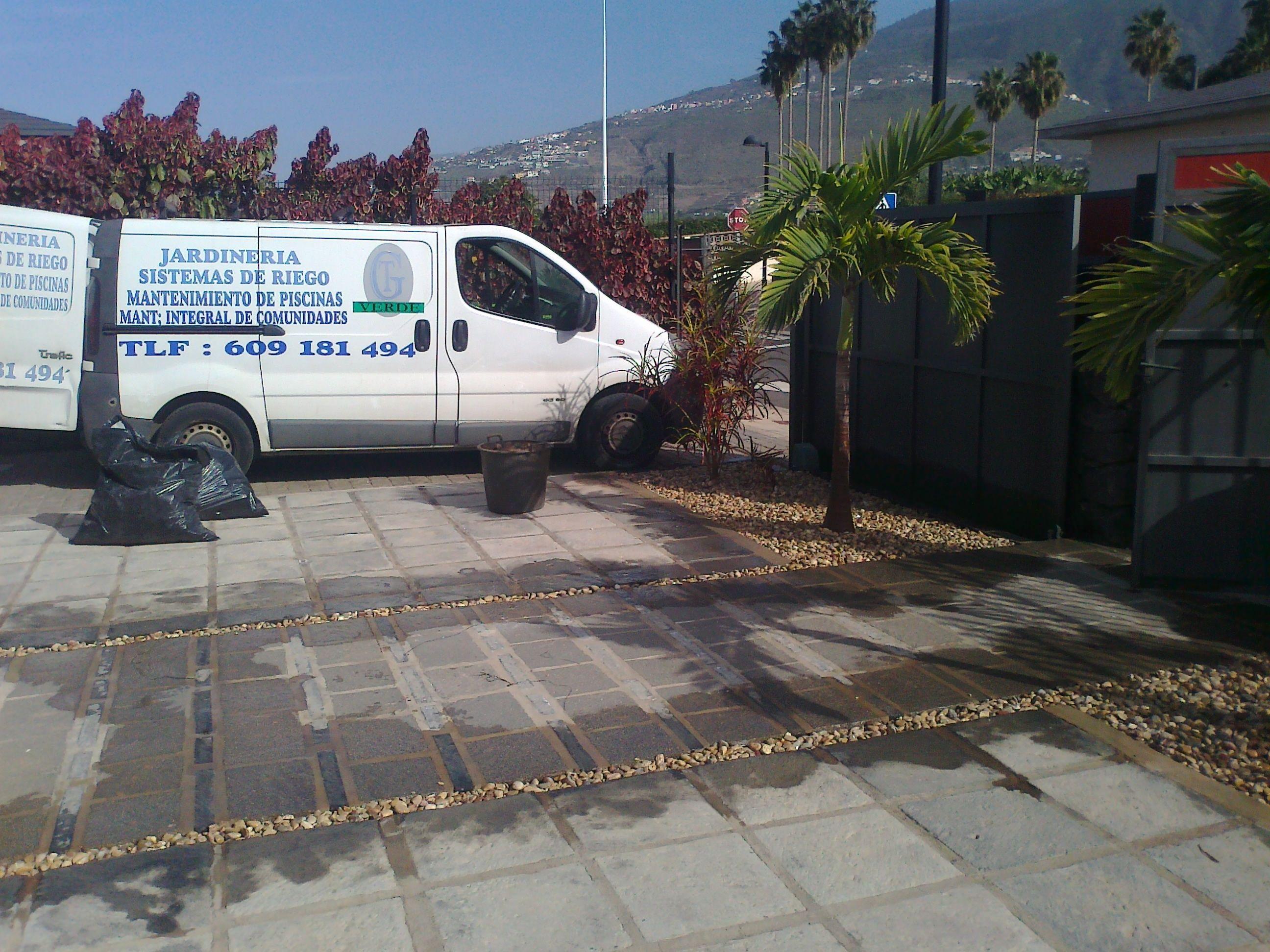 Foto 29 de Jardines (diseño y mantenimiento) en Santa Cruz de Tenerife | GT Verde