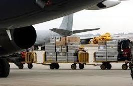 Báscula homologada y certificada-soluciones de pesaje: Servicios de Apoli-Stock