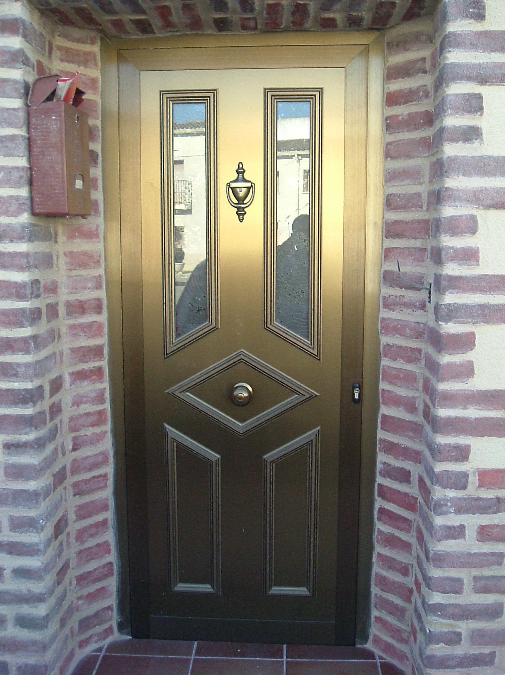 Puerta panel exterior aluminio Zaragoza