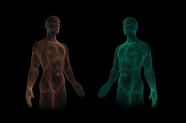 Curso de O.C.S. Biomecánica: Servicios de Osteoquiro