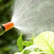 Jardinería: Servicios de A Sólo 1 Click