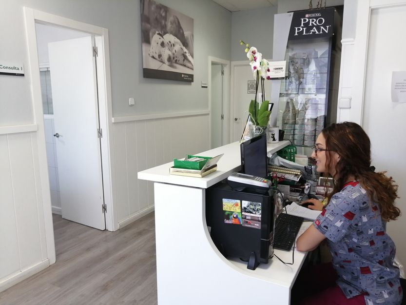 Clínica veterinaria en Leganés