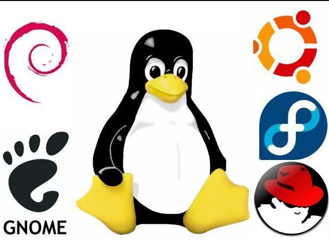 Software Libre 1