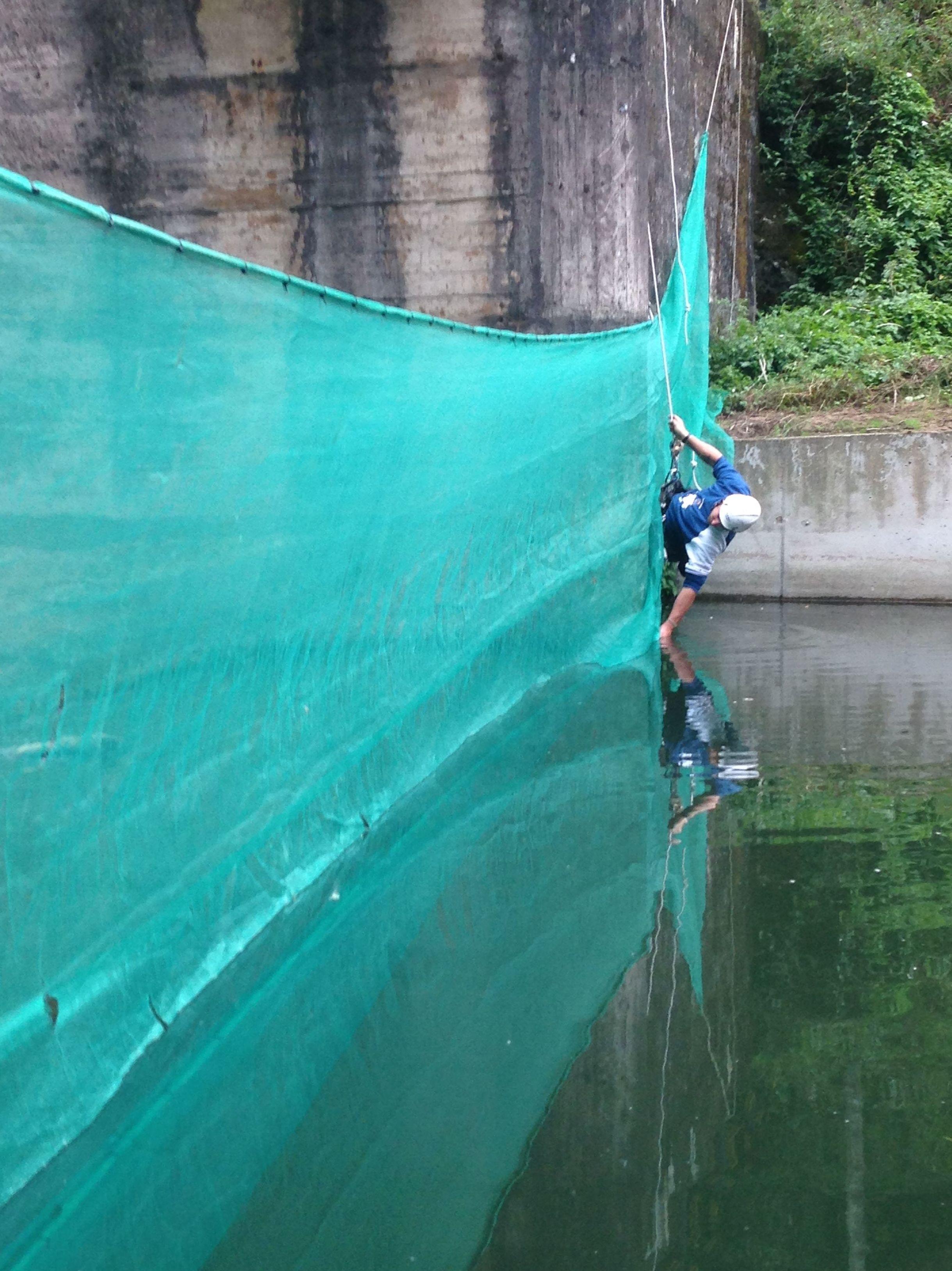 Foto 72 de Trabajos verticales en Torrelavega | Acebo Rehabilitación