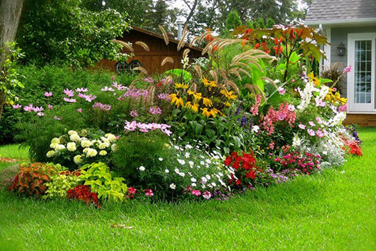 Mejora de jardines en Barcelona