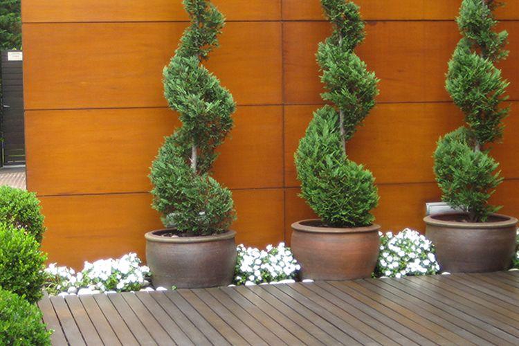 Mantenimiento de jardines en Barcelona