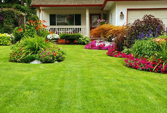 Diseño y proyectos: Servicios de Jardinería Rosich, S.L.