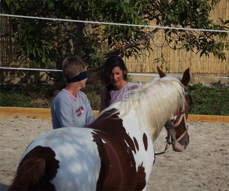 Conexión con los caballos