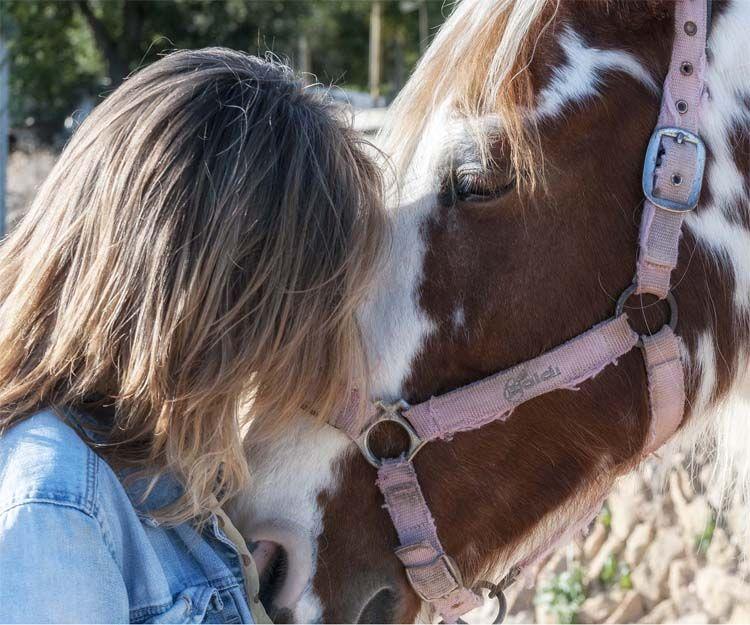 Conexión con caballos