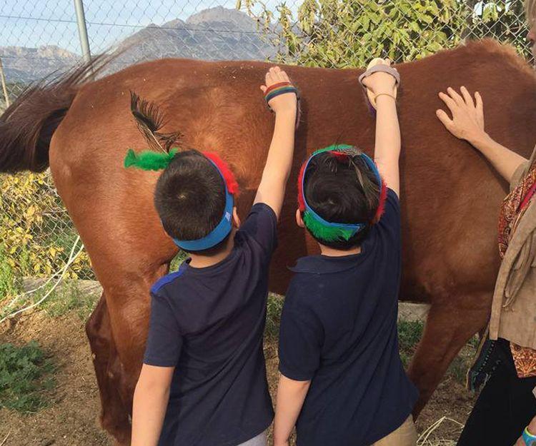 Coaching con caballo