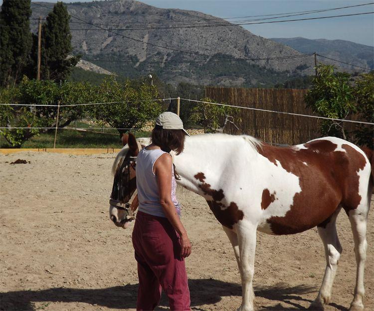Salud emocional con caballos