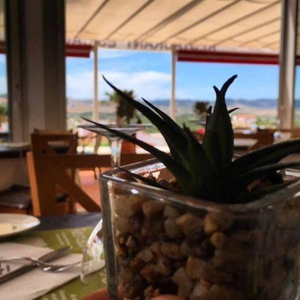 Foto 20 de Cocina mediterránea en Es Mercadal | Restaurant Es Cactus