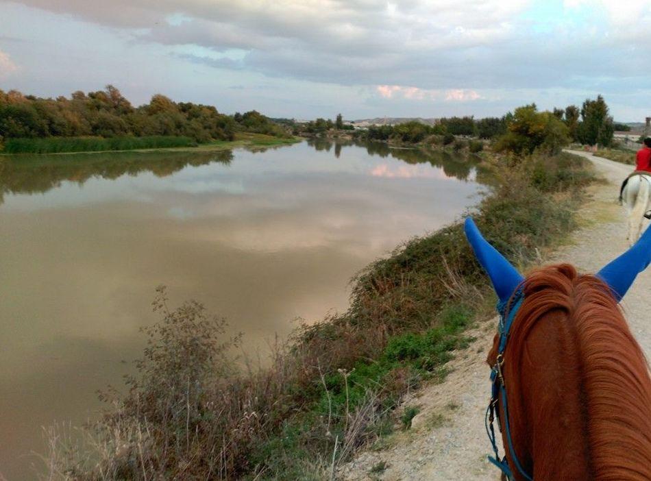 Paseos a caballo por un entorno privilegiado