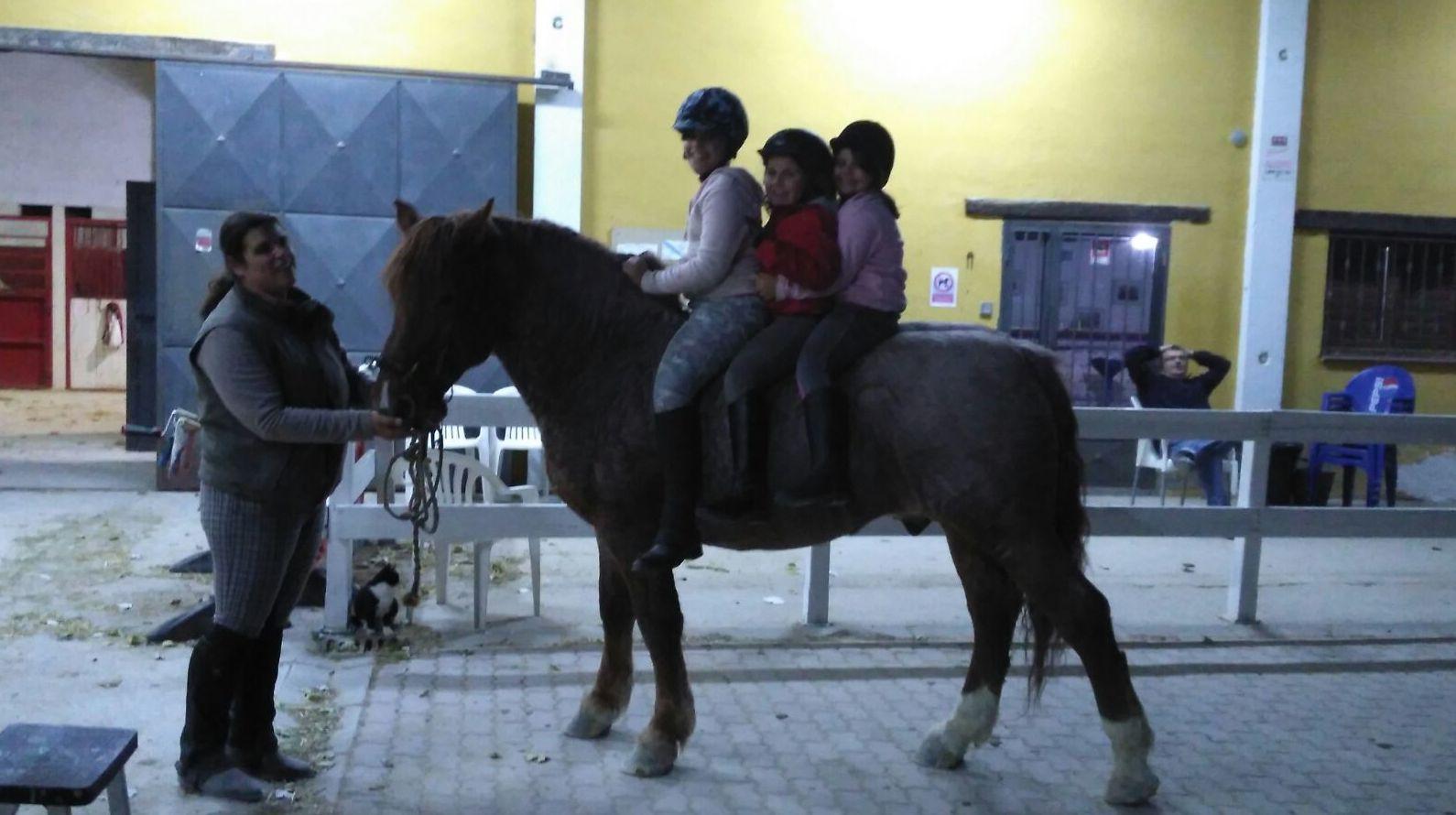 Clases de equitación para todas las edades en Zaragoza