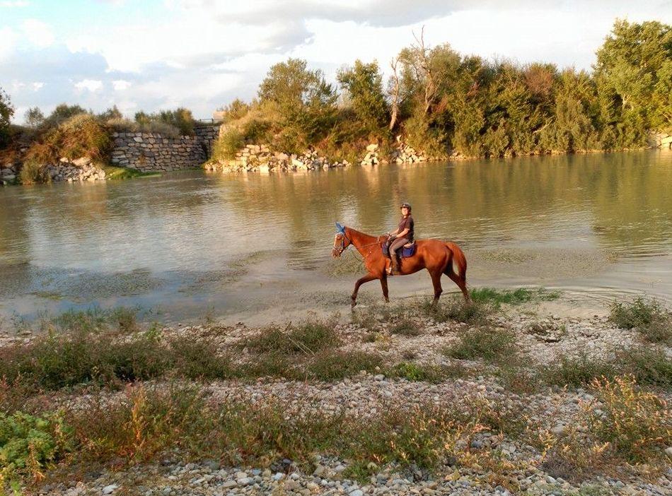 Paseos a caballo por la Ribera del Ebro