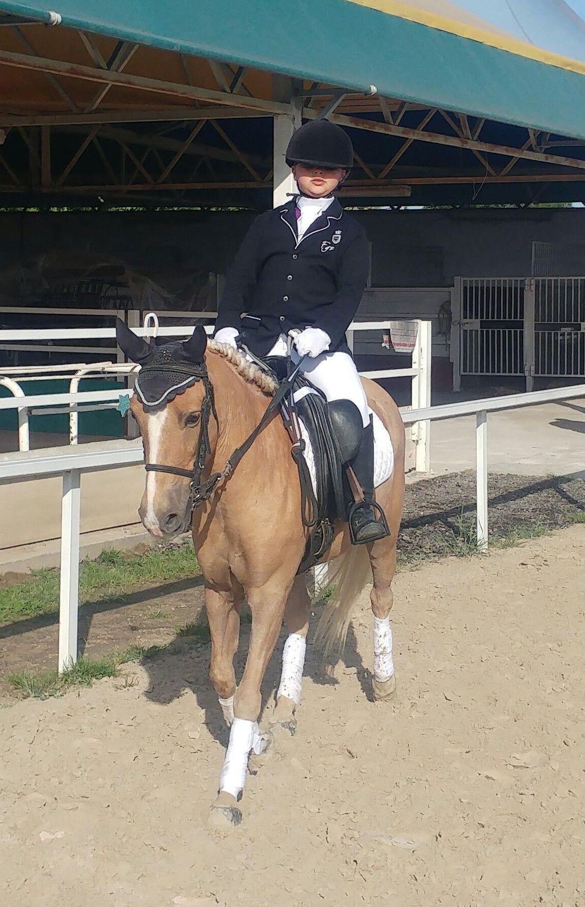 PONYCLUB: Servicios de Hípica Riding School